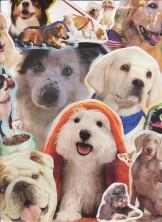 Puppy Love - Dana